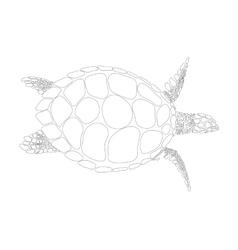 turtle symbol vector image vector image