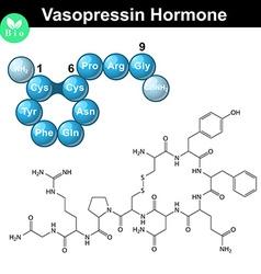 Vasopressin molecular structure vector