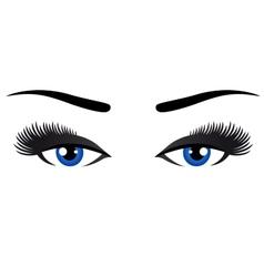 blue eyes with long eyelashes vector image