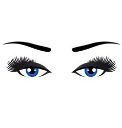 Blue eyes with long eyelashes vector