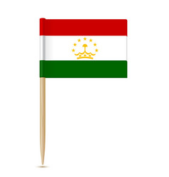 tajikistan flag toothpick on white background vector image vector image