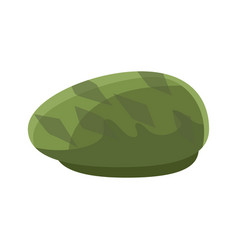 green beret vector image
