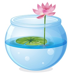 An aquarium with a waterlily and a flower vector