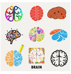 Collection of brain vector image vector image
