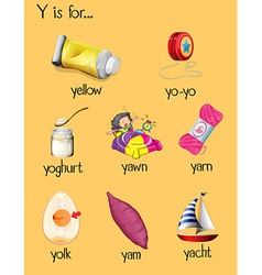 Many words begin with letter y vector
