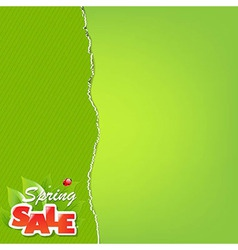 Green torn paper borders and sale label vector