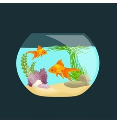 Aquarium fish seaweed underwater tank isolated vector image