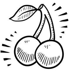 doodle cherry cherries vector image vector image
