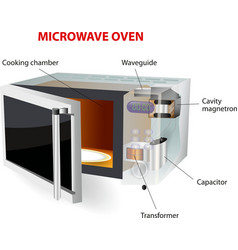 Microwave oven vector