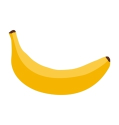 Banana on a white background vector