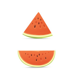 fresh and juicy red watermelon and slices eat vector image