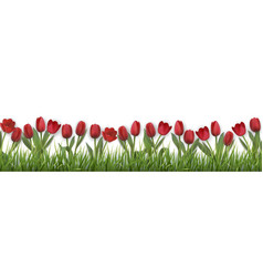 red tulips and grass vector image vector image
