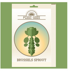 brussels sprout seed pack vector image