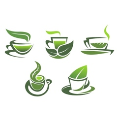 Green tea symbols and emblems vector image