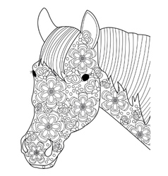 Head horse coloring for adults vector image vector image