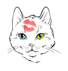 beautiful white cat face with different eyes color vector image