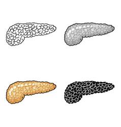 Human pancreas icon in cartoon style isolated on vector