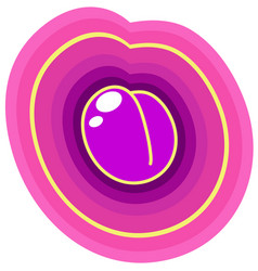 purple plum vector image vector image