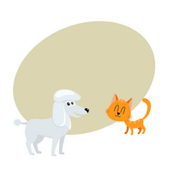 Poodle dog and red cat kitten characters vector