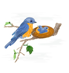 Birdie-and-little-birdsin the nest vector