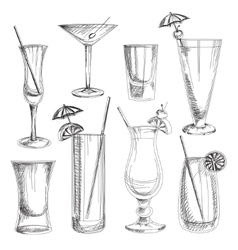 Doodle cocktails vector image