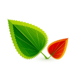 autumn winter vector image vector image