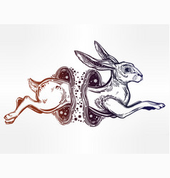 Hare or rabbit jumping through the magic wormhole vector