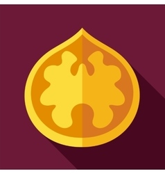 Walnut flat icon fruit nut vector