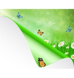 Spring background with sky flowers grass vector