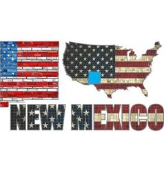 USA state of New Mexico on a brick wall vector image