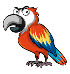 Parrot with angry face vector