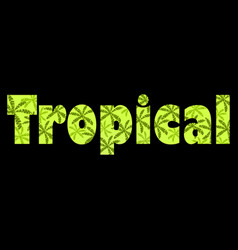 Tropical text with palm leaves inscription vector