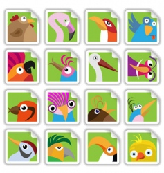 Cartoon birds set vector