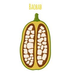 baobab detox fruit cartoon flat style vector image