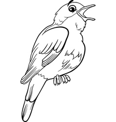 nightingale bird coloring page vector image vector image