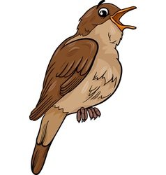 nightingale bird cartoon vector image