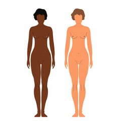 african and european women human front side vector image