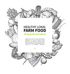 vegetable hand drawn vintage frame vector image vector image