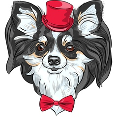 Cute hipster dog chihuahua vector