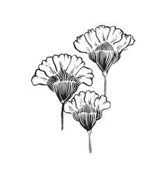Hand drawn flower 03 vector