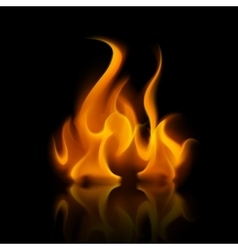 Yellow orange fire flame bonfire on background vector