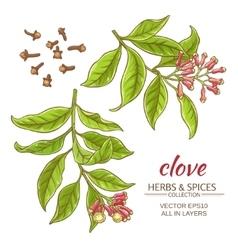 clove set vector image