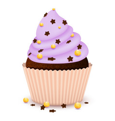 Chocolate cupcake with decorate vector