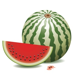 Watermelon and a slice vector