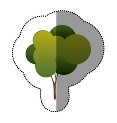 color natural tree icon vector image vector image