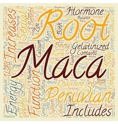 The magical benefits of peruvian maca text vector