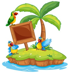 Scene with three parrots on island vector image