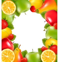 Frame made of fresh juicy fruit vector