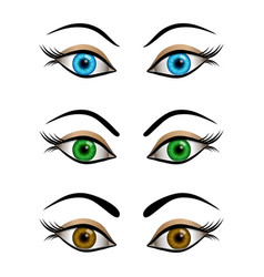 Set of cartoon female eyes blue brown and green vector