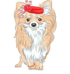 Chihuahua in the red hat and bracelet vector